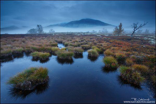 Blaue Stunde im Rondane