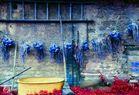 Blaue Zwiebeln vor gelber Wanne
