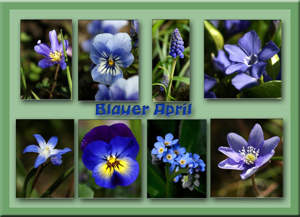 Blauer April