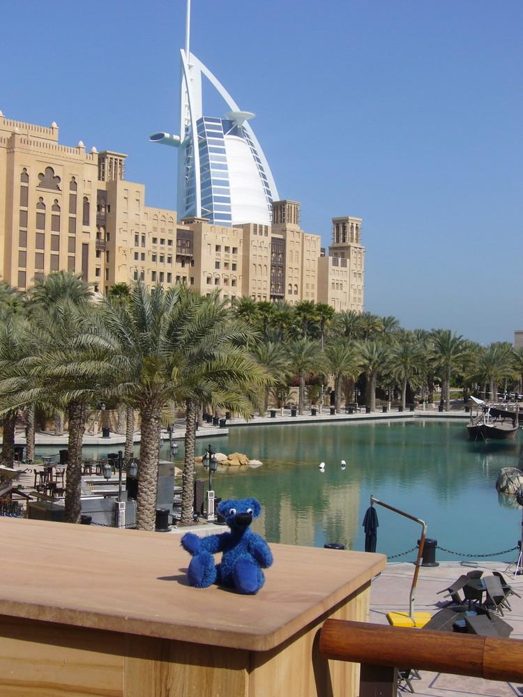 Blauer Bär in Dubai 1
