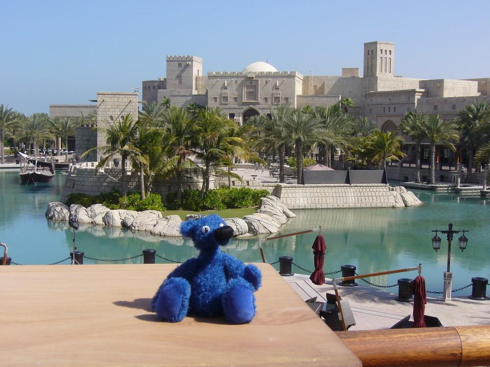 Blauer Bär in Dubai 2