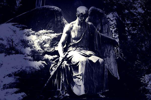 Blauer Engel...