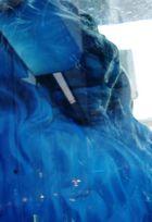 Blauer Loewe im Wasser