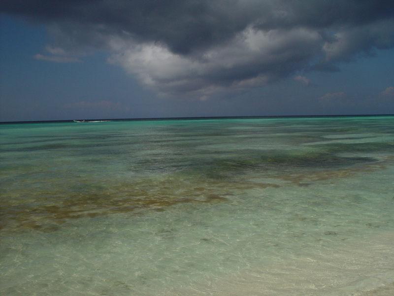 Blaues Wasser auf Saona Beach; Dom. Republik, Dezember 2001