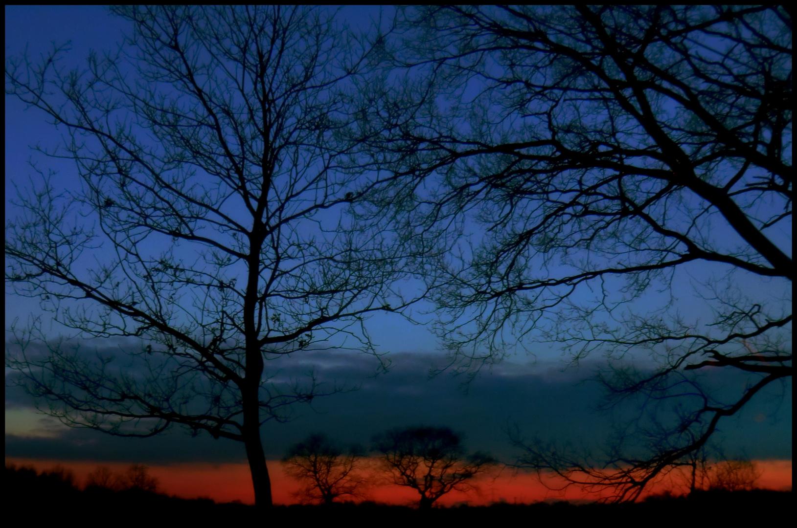 Blaue...und Rote Stunde...