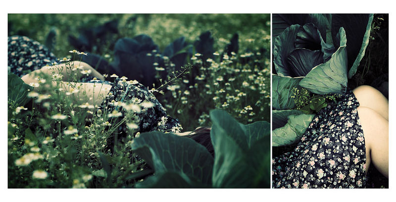 Blaukraut & Brautkleid