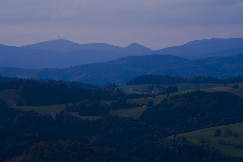 Blauwald