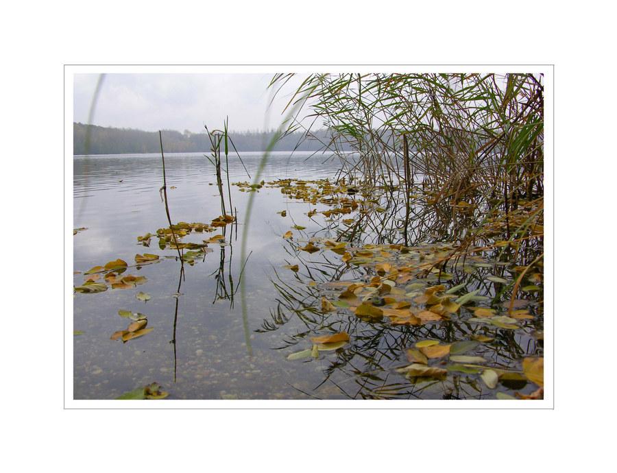 Bleibtreusee im Herbst, II