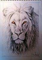 Bleistift-Löwe...
