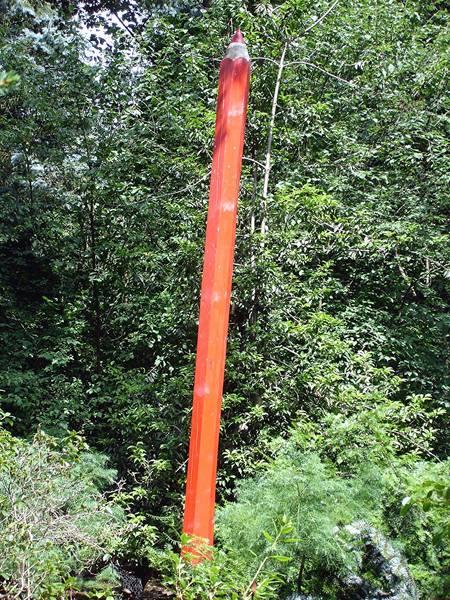 Bleistifte die im Wald wachsen???