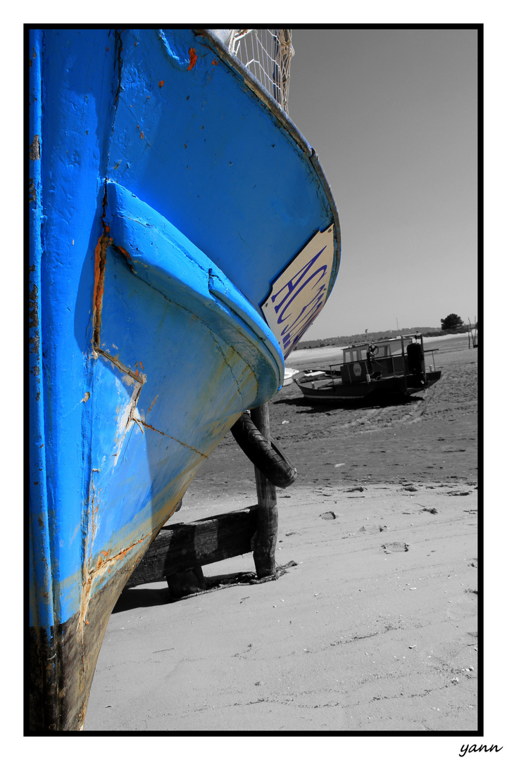 bleu....