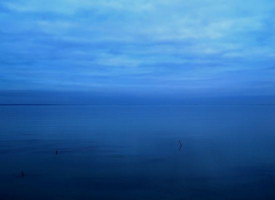 Bleu de Cancale
