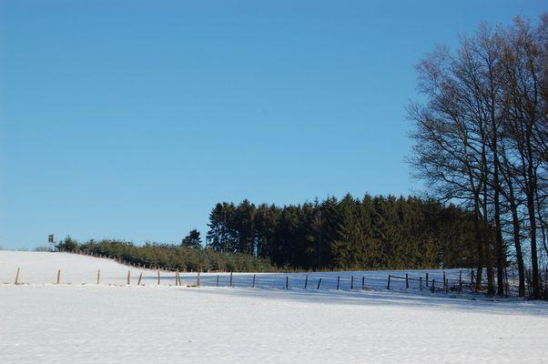 bleu-neige