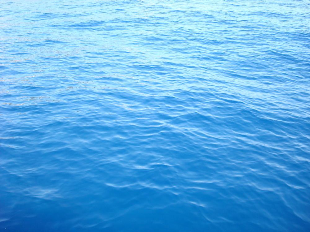 Bleus de Mer Méditerranée