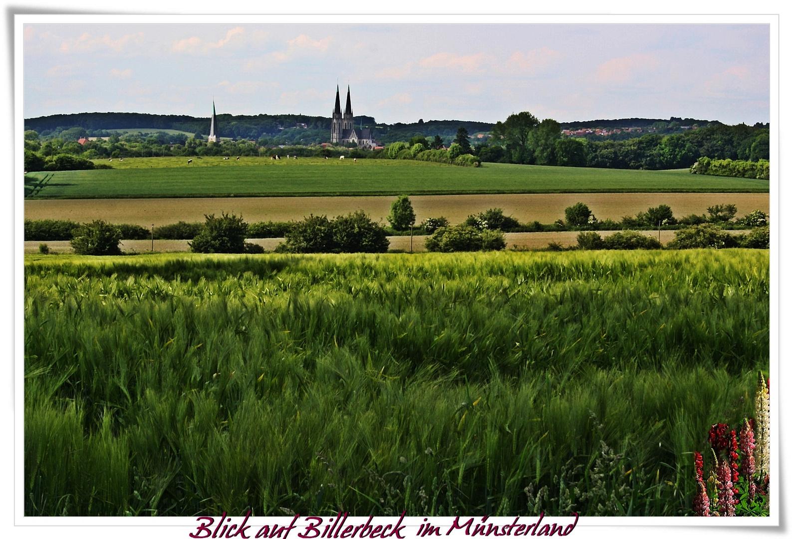 Blick auf Billerbeck