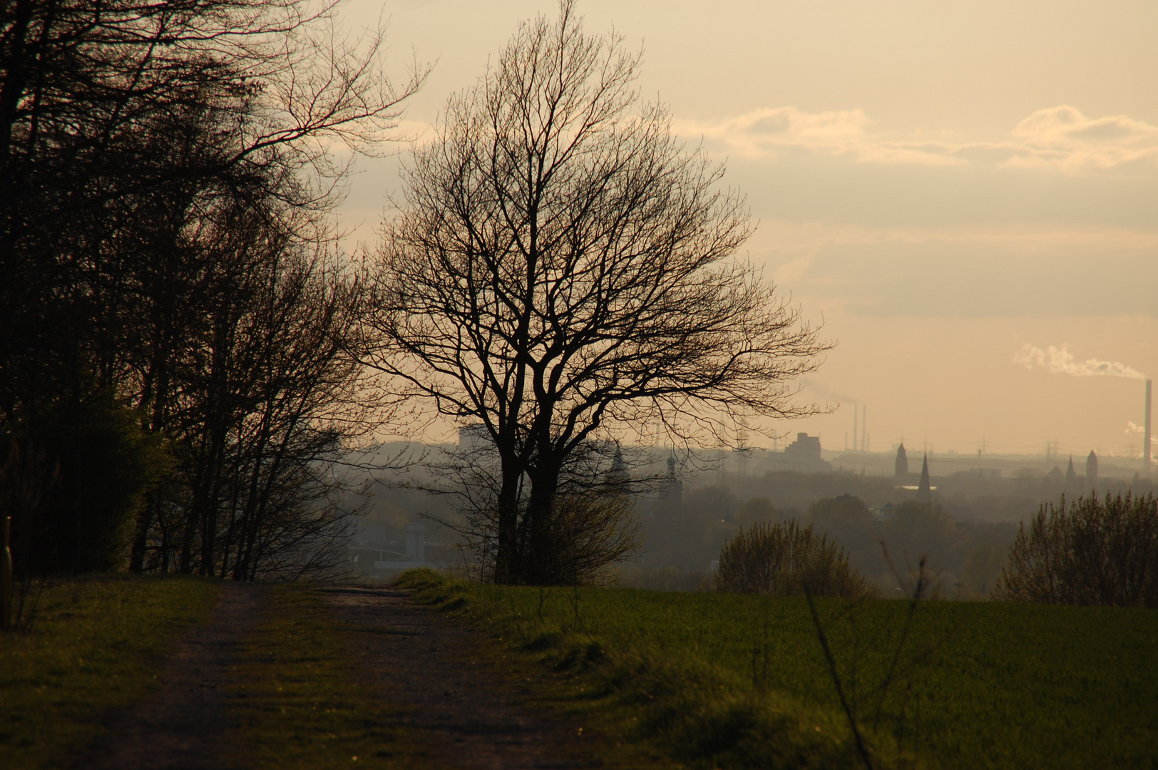 Blick auf Bochum-Riemke