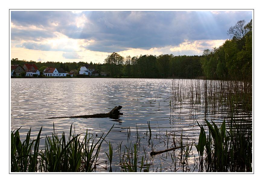 Blick auf Brandenburger Seen 5 ....