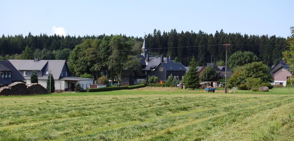 Blick auf Brennersgrün