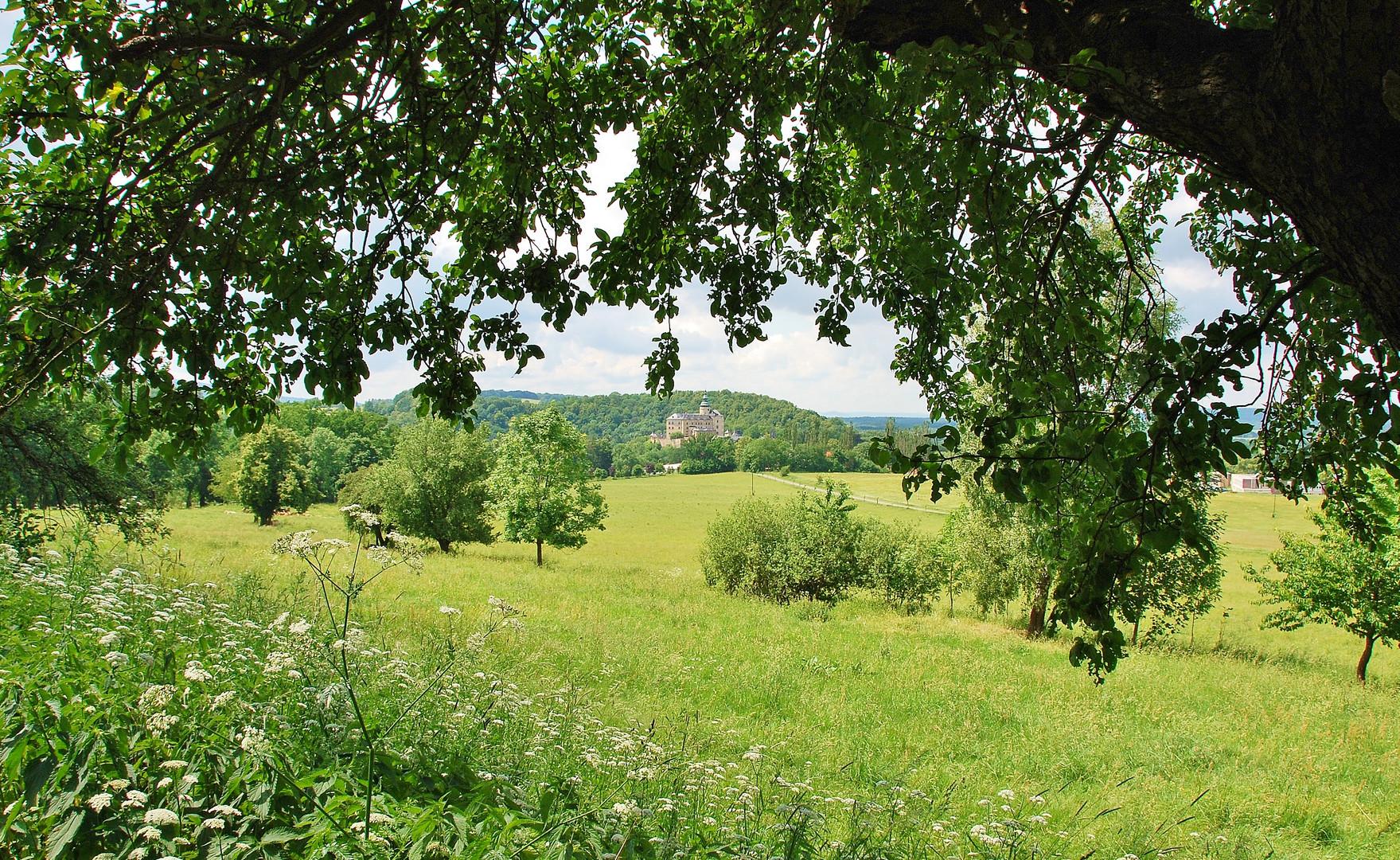 Blick auf Burg und Schloss Friedland