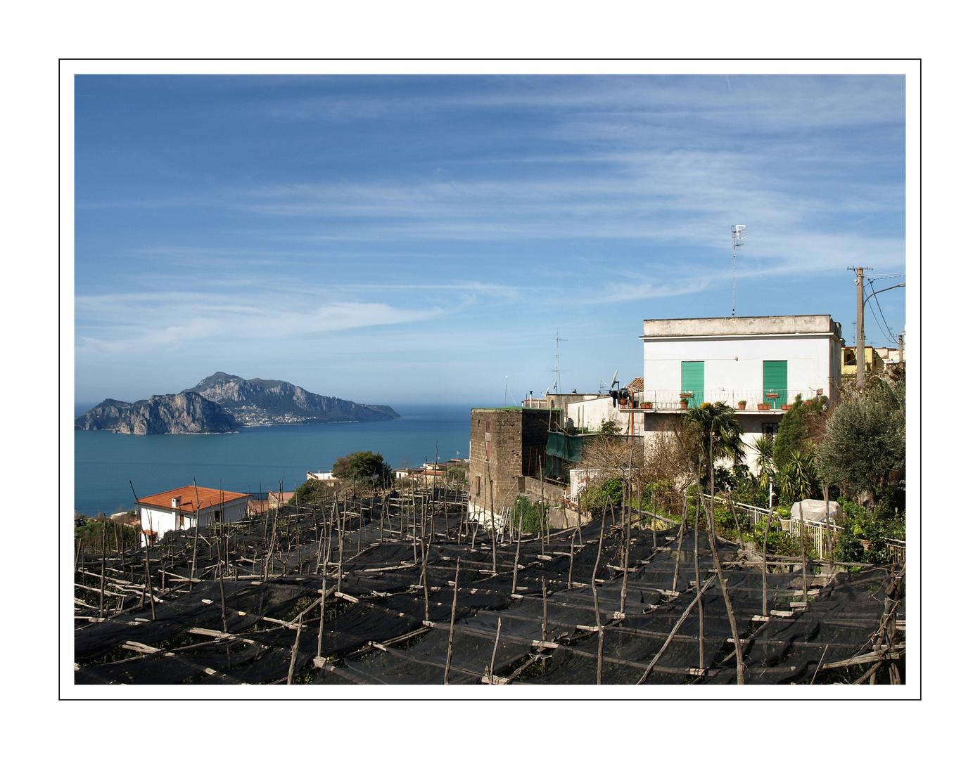 Blick auf Capri von Termini aus