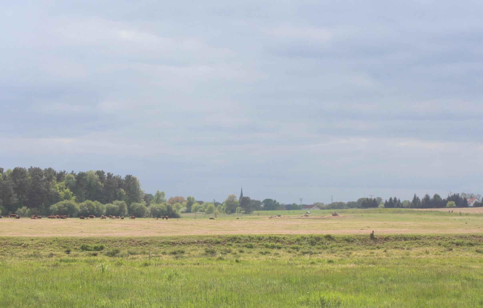 Blick auf das Dorf Hammelspring/Uckermark