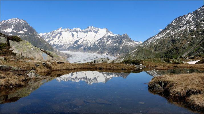 Blick auf den Aletschgletscher .....