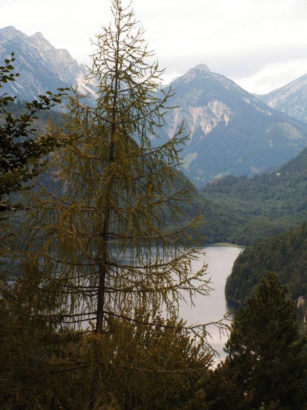 Blick auf den Alp-See