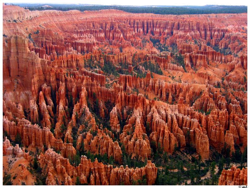 Blick auf den Bryce Canyon