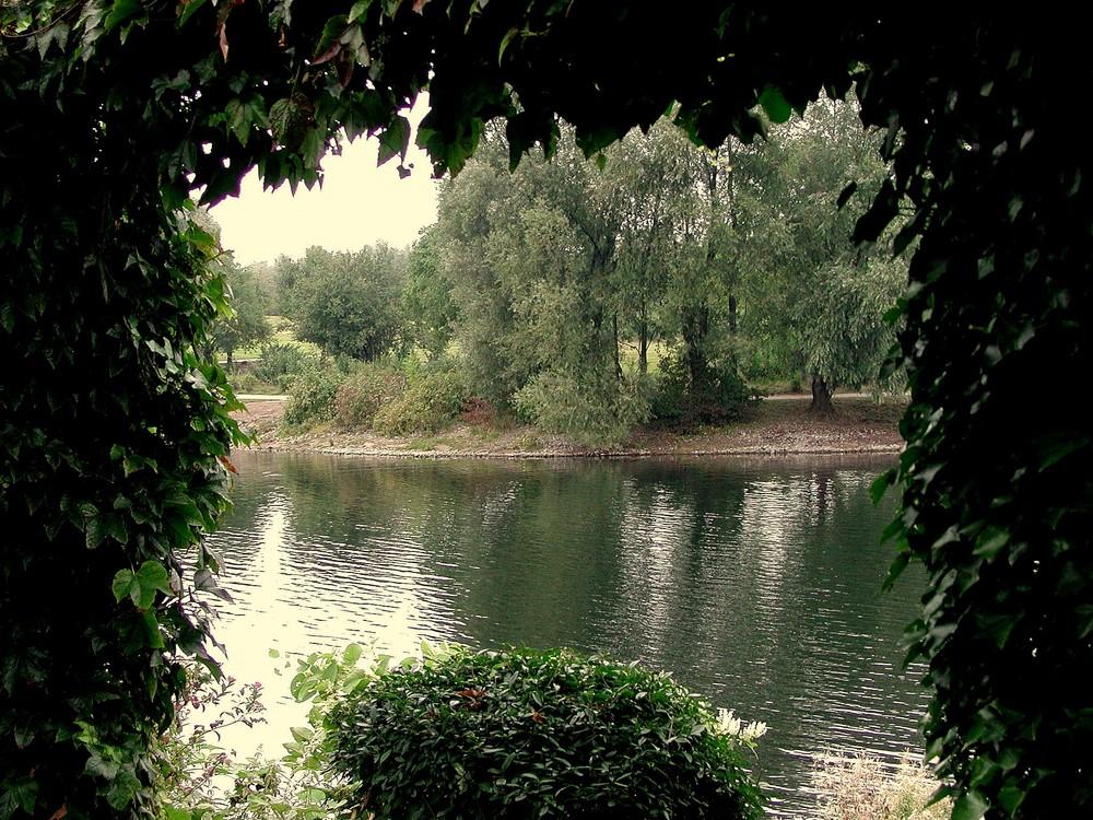 Blick auf den Elfrather See in Krefeld