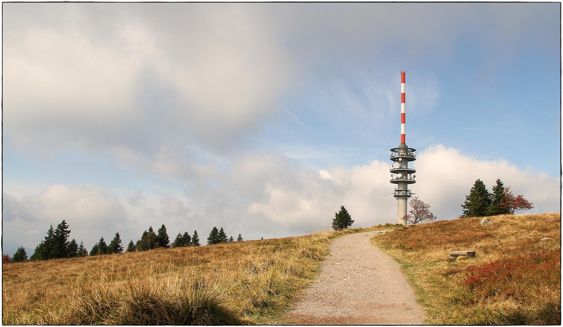 Blick auf den Feldbergturm