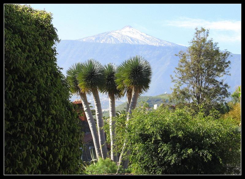 "Blick auf den grossen Vulcan ""Pico del Teide"""