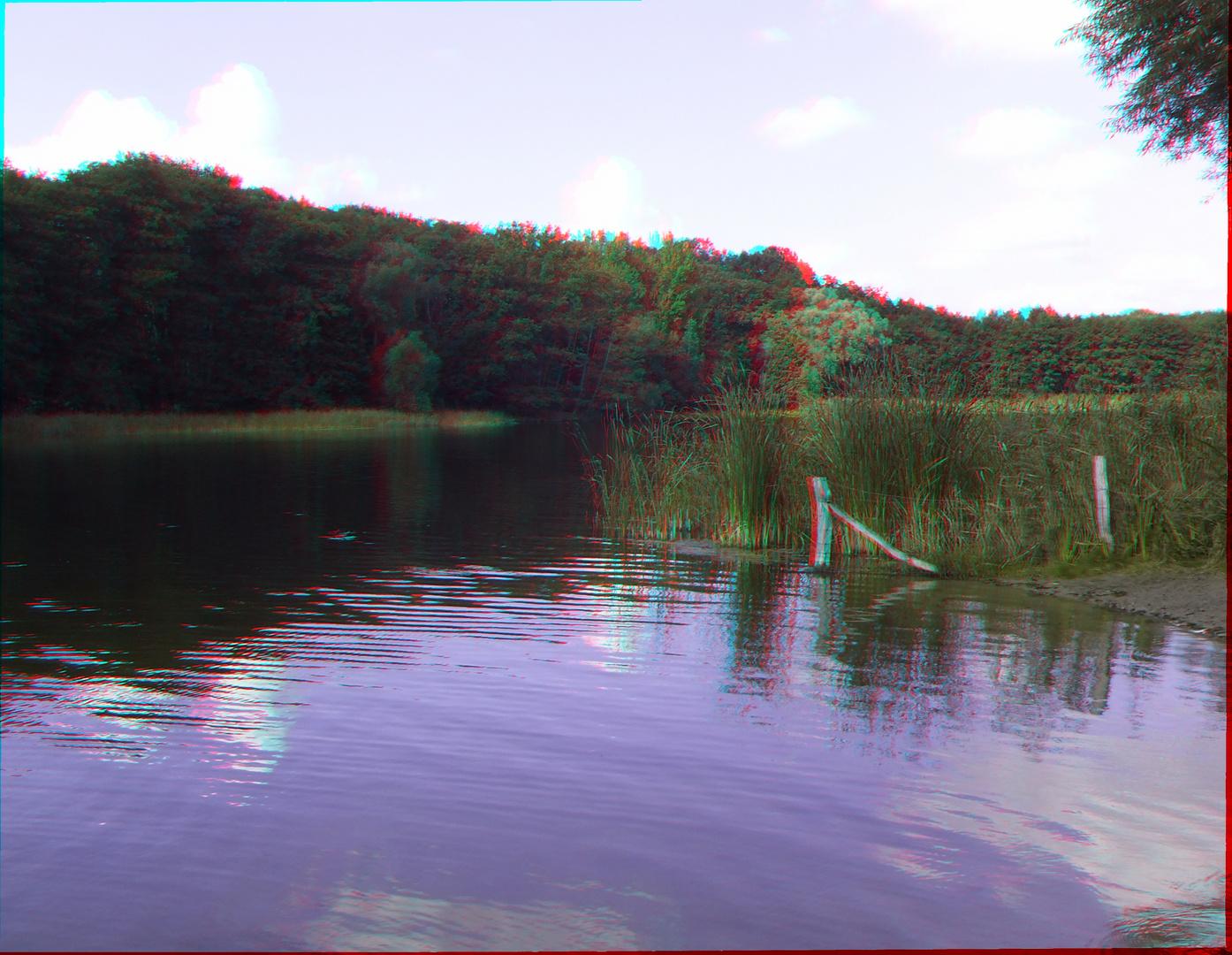 Blick auf den Grunewaldsee in 3D