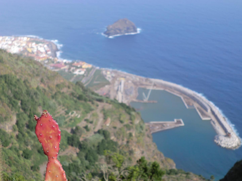 Blick auf den Hafen von Garacchico