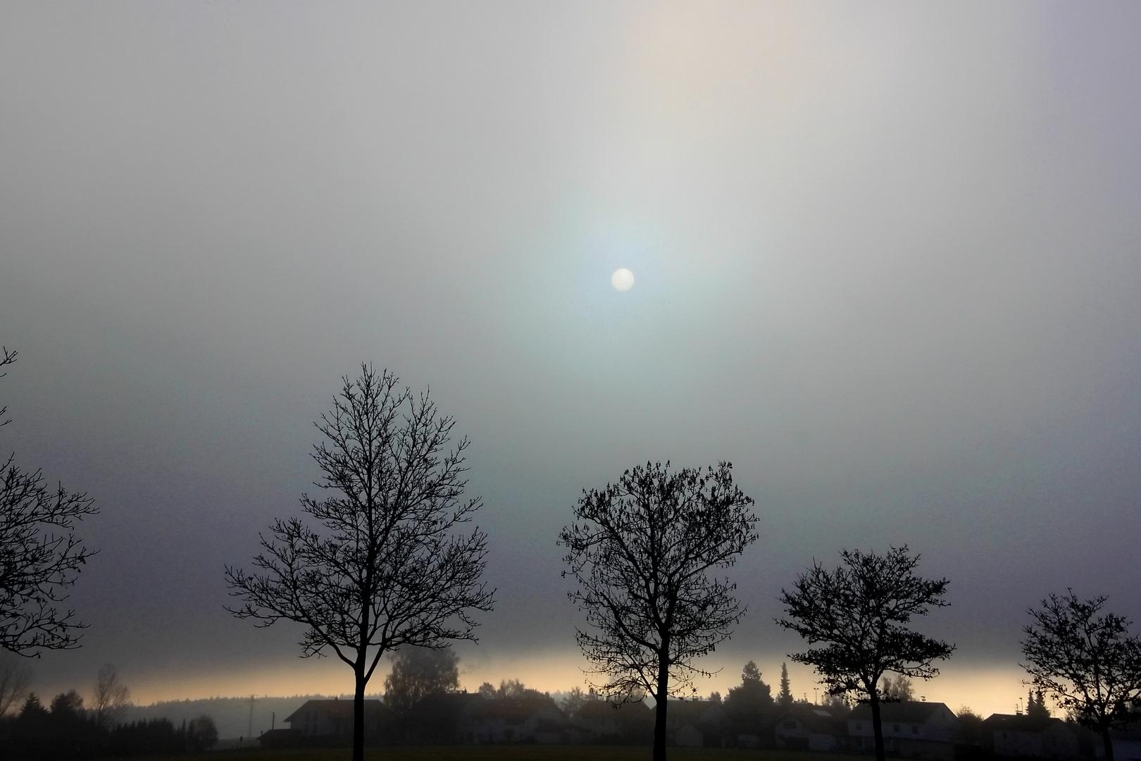Blick auf den Morgen