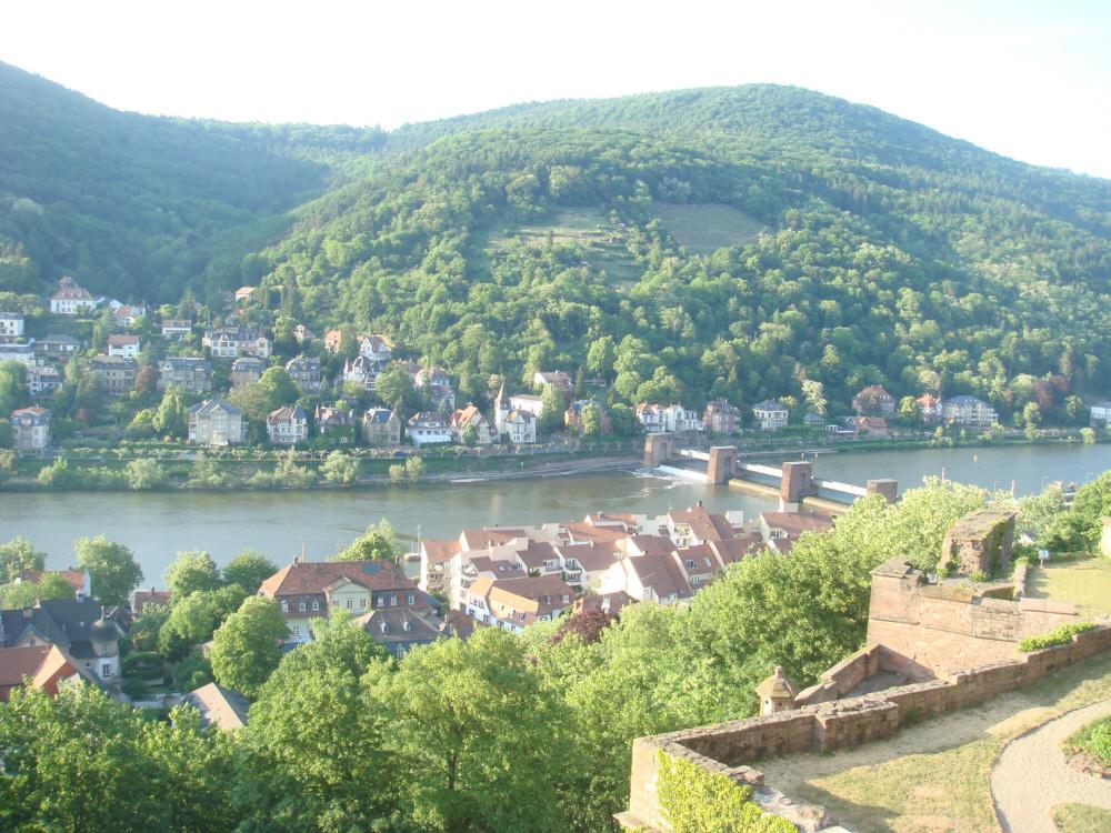 Blick auf den Neckar