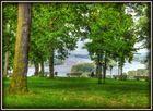 Blick auf den Rhein-Rochusberg-Bingen am Rhein