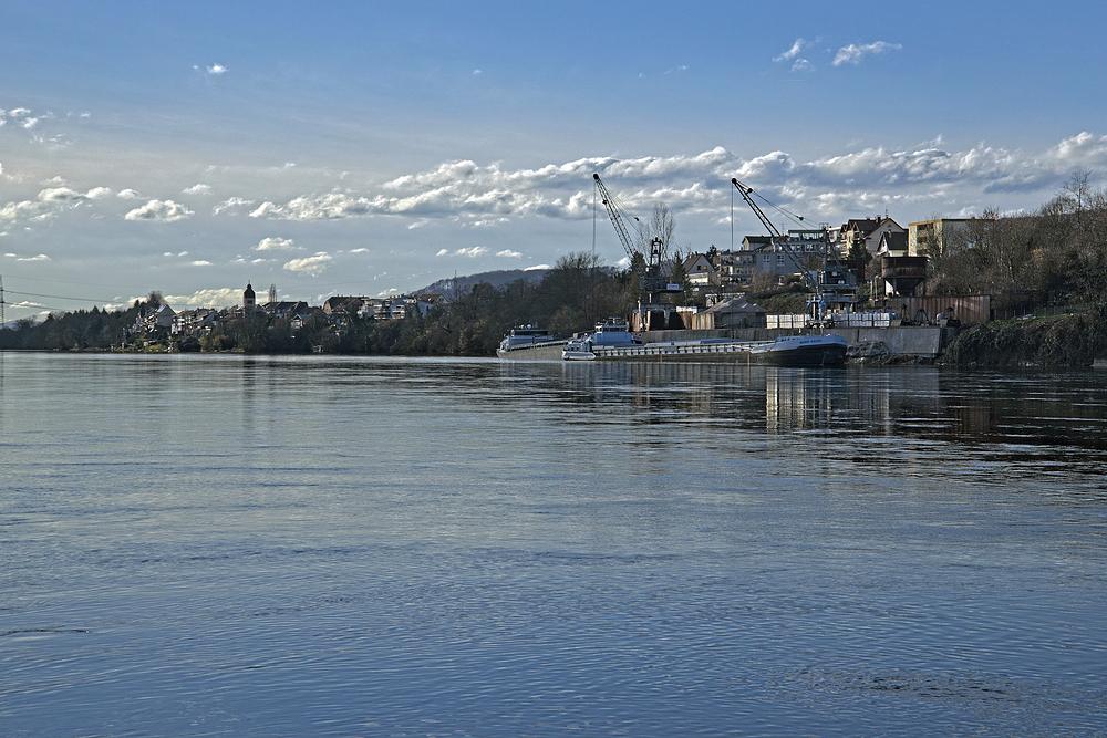 Blick auf den Rheinhafen von