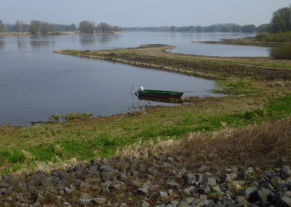 Blick auf die Elbe bei Hitzacker