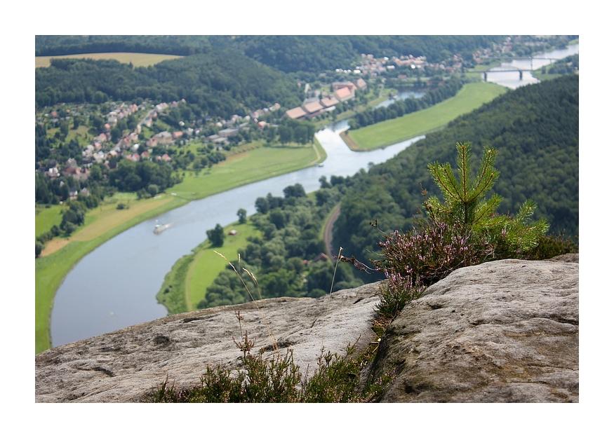 ...Blick auf die Elbe...