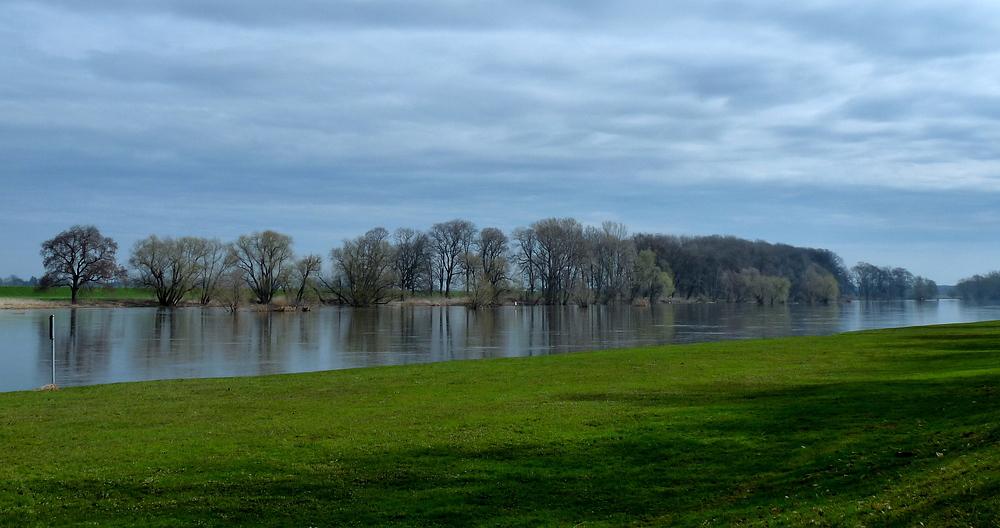 Blick auf die Elbe in Riesa