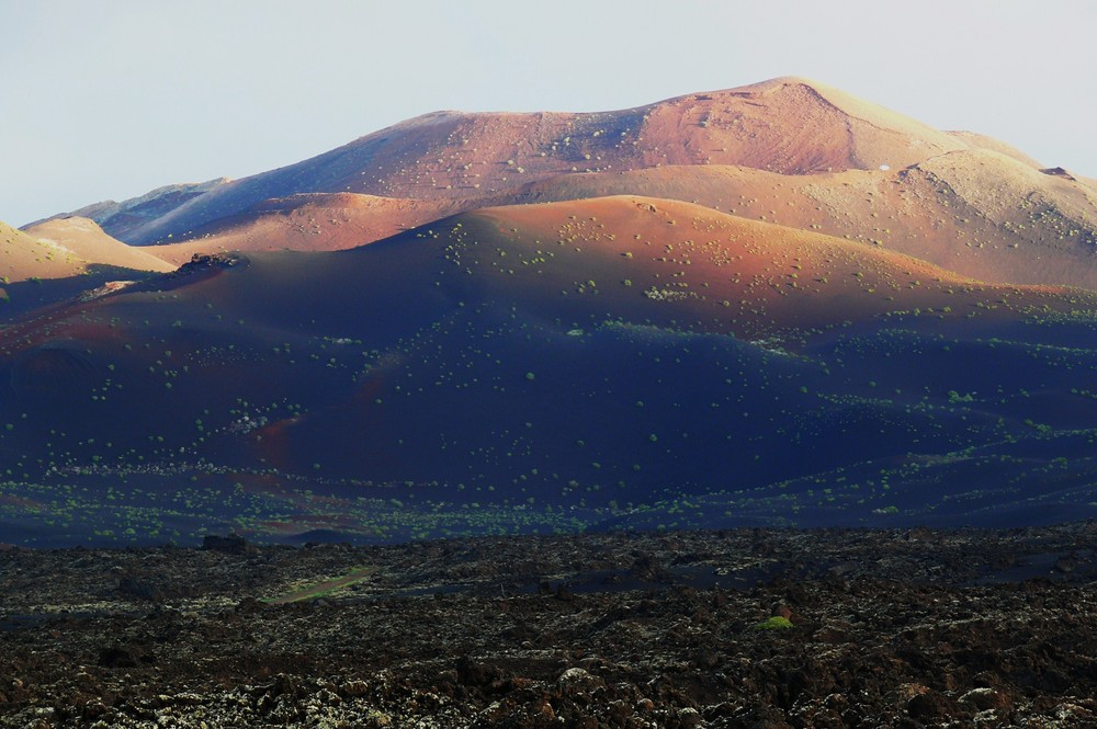 Blick auf die Feuerberge (Timanfaya N.P.)