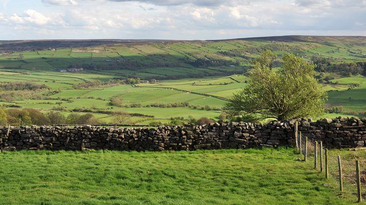 Blick auf die North York Moors