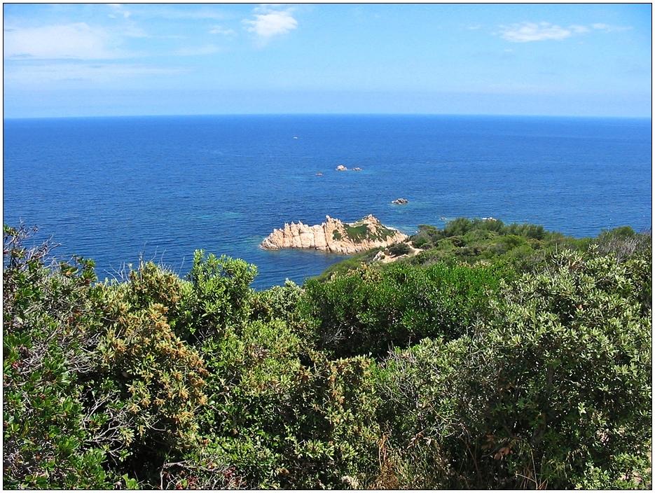 Blick auf die Vogelinsel