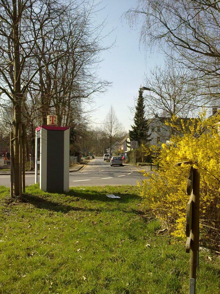 Blick auf Donrather Straße. Dienstag, 22. März 2011