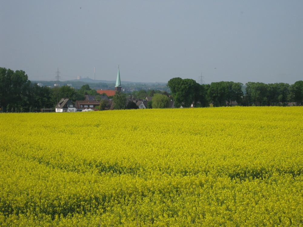 Blick auf Dortmund Asseln