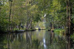 Blick auf ein Fließ bei Lübbenau/Lehde im Spreewald