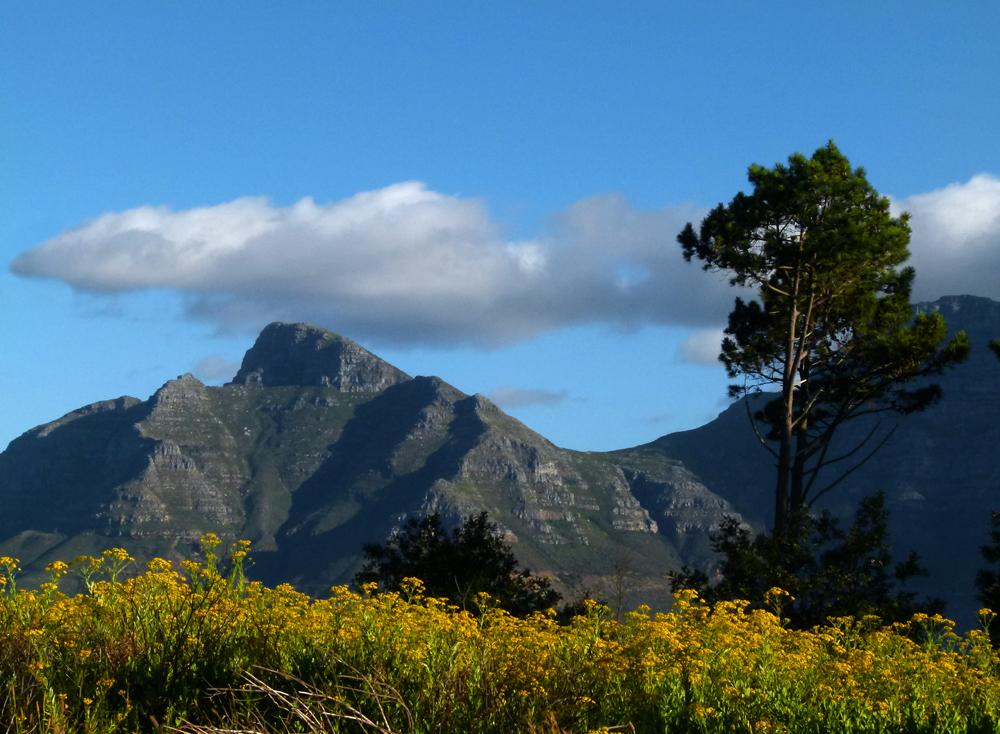Blick auf einen Teil des Tafelbergmassivs..,