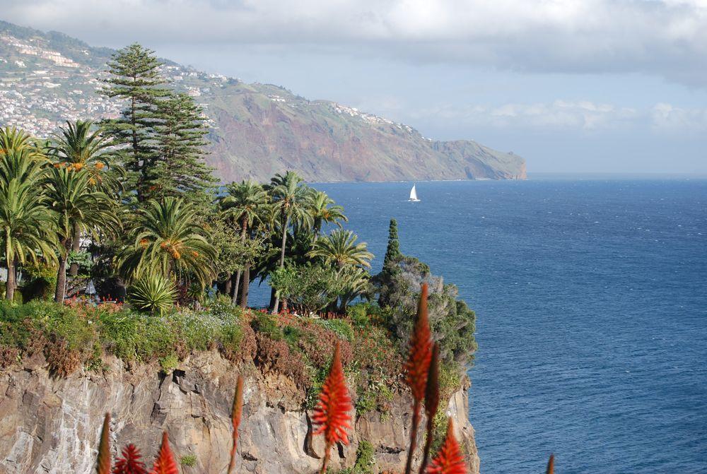Blick auf Funchal ...