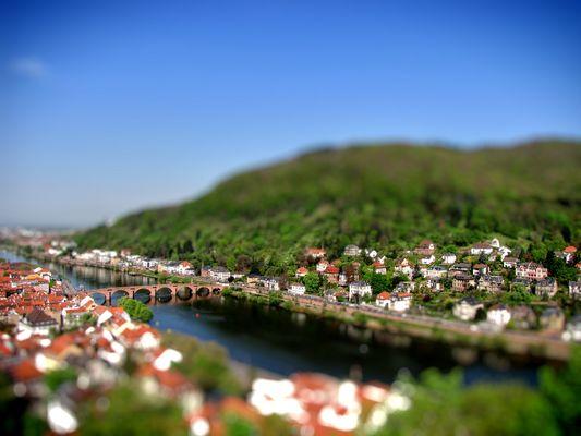 Blick auf Heidelberg 2012