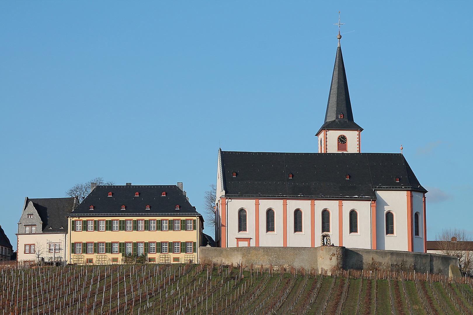Blick auf Hochheim am Main